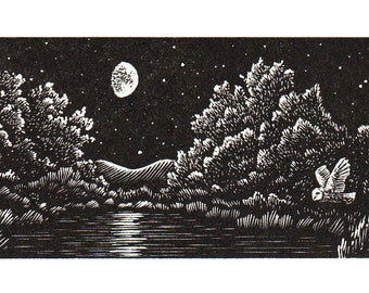 Owl And The Moonlit Lake     *New*