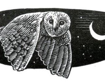 Melancholy Owl