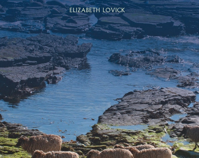 A North Ronaldsay Yarn  The Sheep, Their Wool and Their Island (pdf version) - instant download