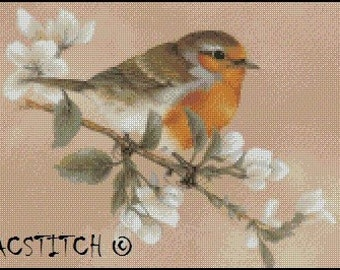 BIRD cross stitch pattern No.570
