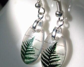 Fern earrings, resin earrings , petite earrings, nature earrings green earrings