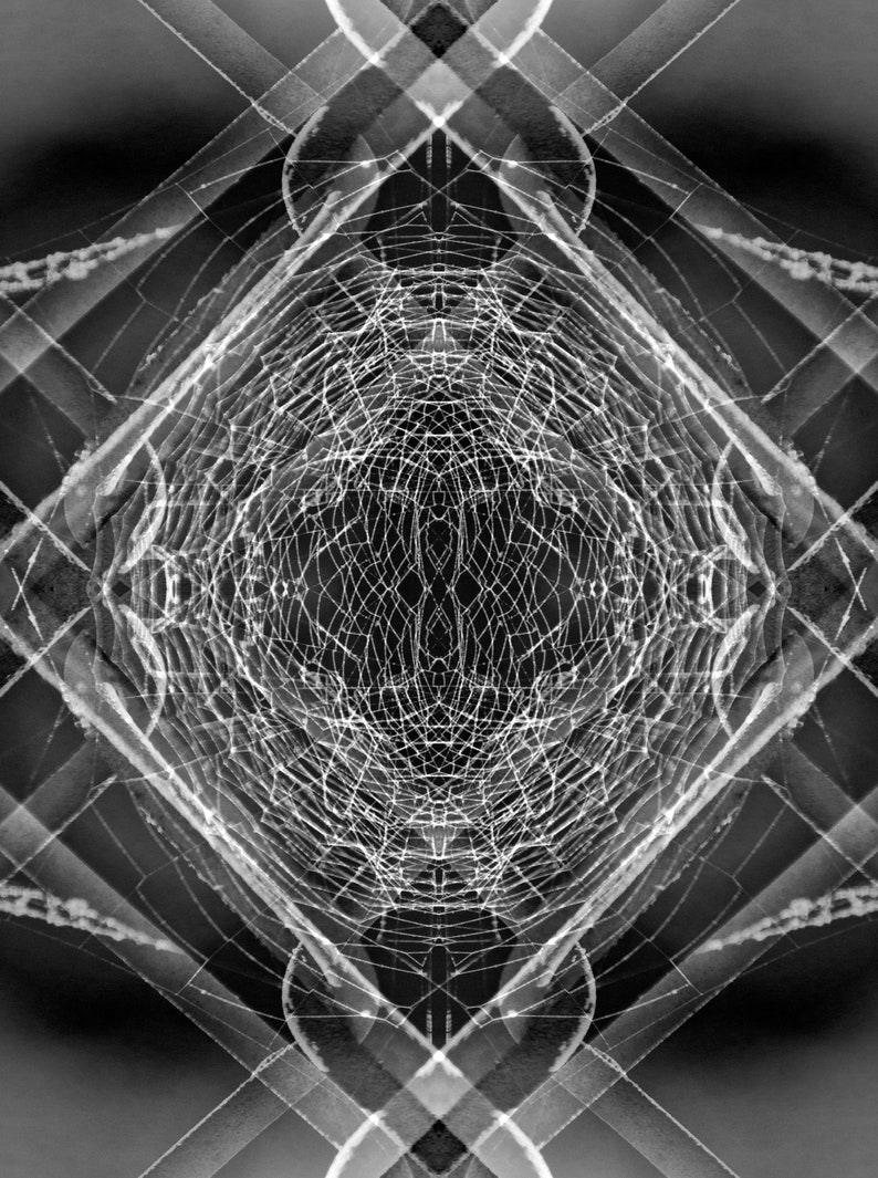 Various Sizes Fine Art Photograph Symmetry Series Knotted /& Tangled