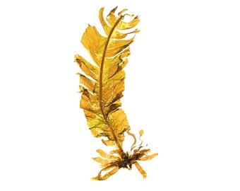 Maine Seaweed photograph (Alaria esculenta)  - beachcombing, beach art, marine algae