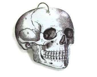 Necklace Anatomical Skull Small Pendant