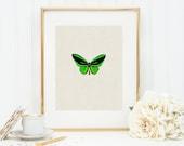 Butterfly in Green Art Print 8x10 5x7 4x6 Canvas Print STAR MS