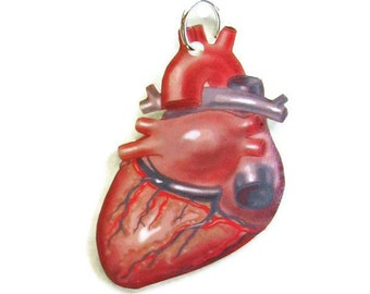 Necklace Anatomical Heart Small Pendant Vintage Illustration Gifts for her