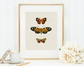 Butterflies in Orange Art Print 8x10 5x7 4x6 Canvas Print STAR MS