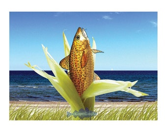 Corn on the Cod note cod