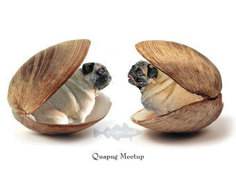 Quapug Meetup (aceo)