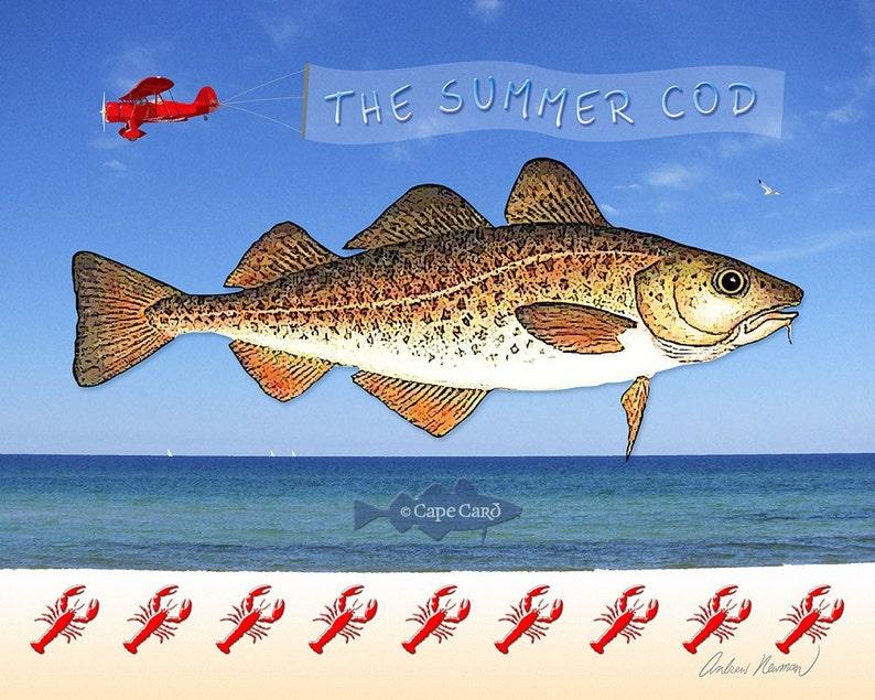 The Summer Cod 10x8 print image 0