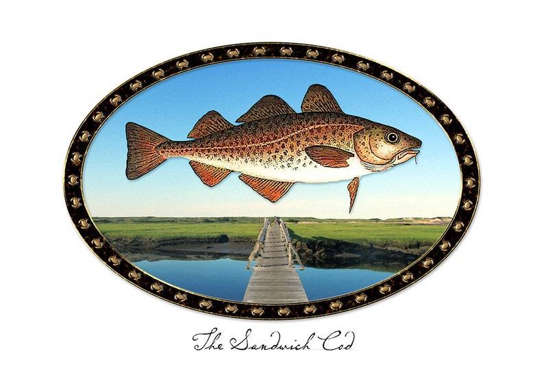 The Sandwich Cod image 0