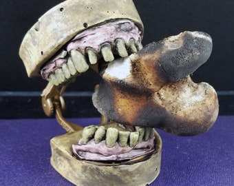 Zombie Dentition Specimen - Zombie Teeth - Zombie Taxidermy - Faux Taxidermy - Cabinet of Curiosities - Undead Dentistry - OOK