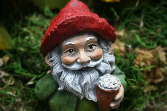 image 0 - Garden Gnomes For Sale