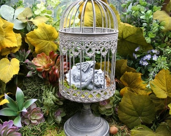 Pet Dragon Statue - Baby Dragon In A Cage - Hand Raised and Ready for a New Home - Concrete Baby Dragon
