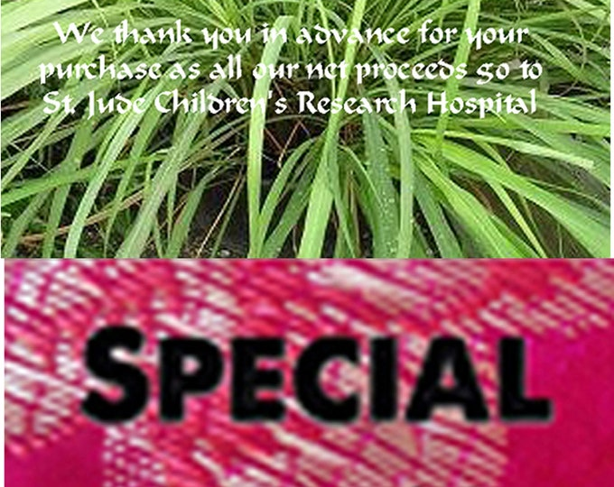Order Lemon Grass Heirloom Seeds now, special sale, reduced price, a free gift, FREE gift