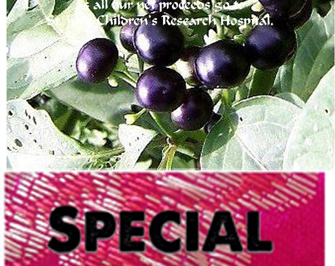 Order Huckleberry, Garden Rare Heirloom Seeds now, FREE gift included
