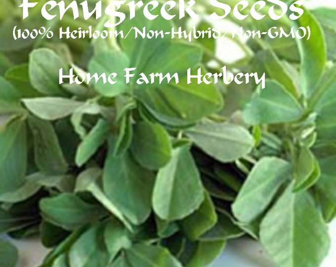 Fenugreek, Herb Seeds, You know when you buy seeds from Home Farm Herbery they will be 100% Non-Hybrid/Heirloom/Non-GMO seeds.