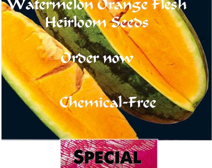 Big Sale on the best Watermelon Orange Flesh Seeds, Buy now and get a FREE gift