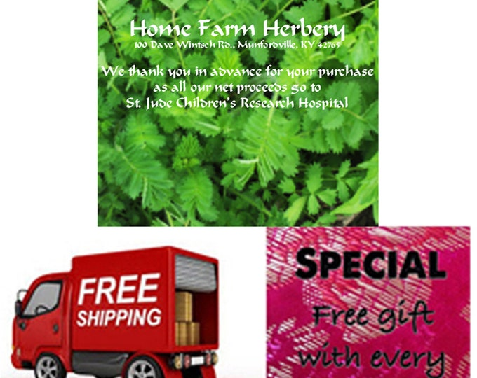 Order Salad Burnet Heirloom Seeds now, Special sale, reduced price, FREE shipping & FREE gift