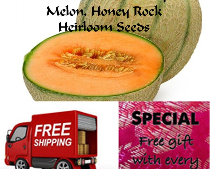 Order Melon (Cantaloupe), Honey Rock Heirloom Seeds, now Special sale, reduced price, free gift, free shipping!