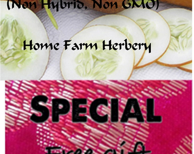Order these rare Poona Kheera Cucumber Heirloom Seeds now, special sale, reduced price & a free gift!
