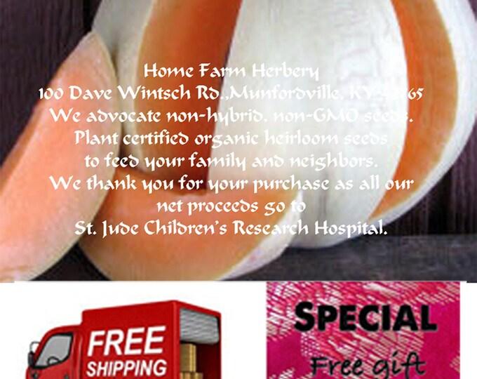 Order Melon, Honeydew Orange Flesh Seeds now, FREE shipping & a free gift
