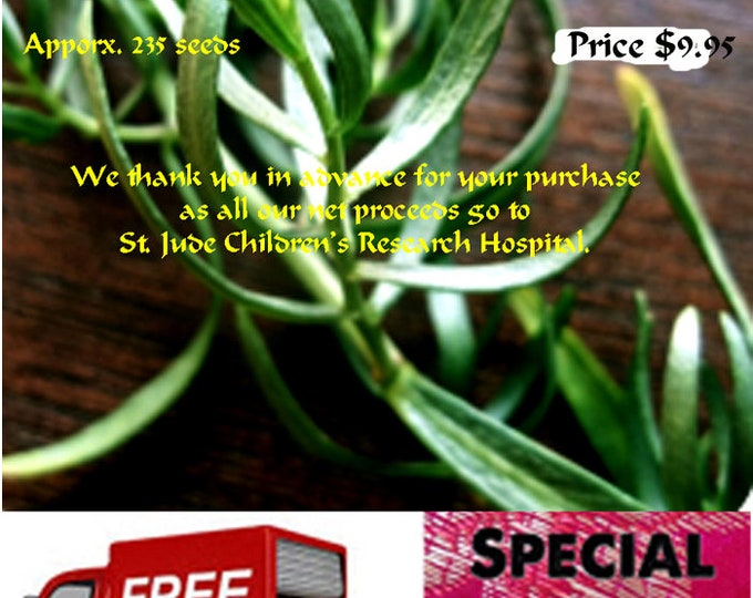 Tarragon Heirloom Seeds, Order now, FREE shipping & a free gift