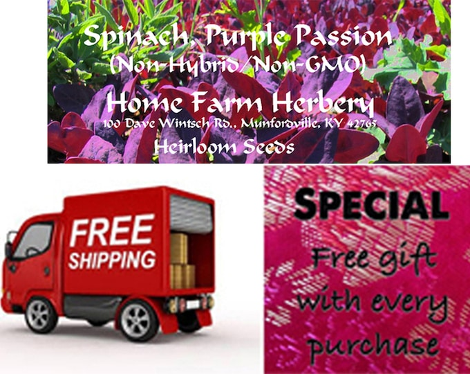 Spinach, Purple Passion Heirloom Seeds, Special sale, reduced price, Order now, FREE shipping, FREE gift