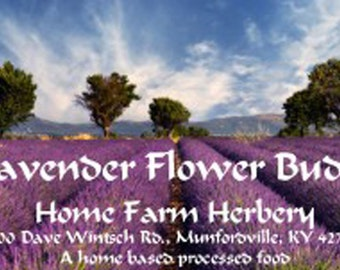 Lavender Flower Buds, culinary, food grade excellent for Cooking bridal sachets and crafts