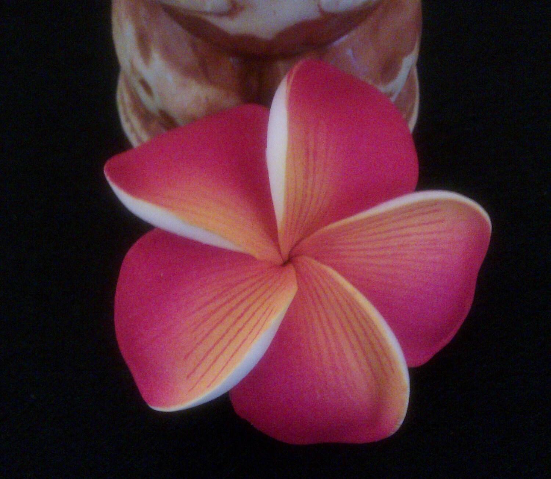 Plumeria Hawaiian Hair Flower Plumeria Hair Barrette Etsy