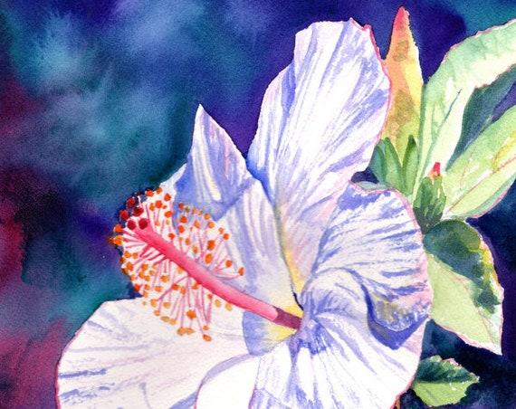 White Hibiscus, Hibiscus Wall Art, Hibiscus Wall Decor, Hibiscus Print, Hibiscus Flower, Hibiscus Plant, Hawaiian Flowers, Tropical Flower