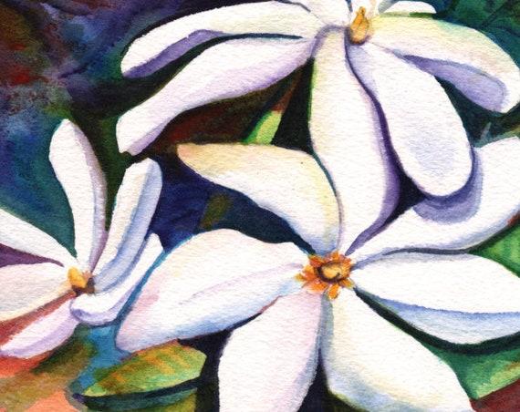 Tahitian Gardenia, Tahitian Tiare Flower, Gardenia Print, Gardenia Wall Art, Polynesian Gardenia, Hawaiian Garrdenia, Hawaii Wall Art