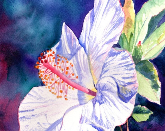 white hibiscus art print, hawaii prints, hawaiian art, hibiscus paintings, kauai maui oahu,  hawaiiana, tropical flowers, aloha
