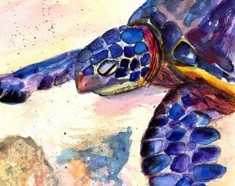 turtle watercolor, turtle art, sea turtle painting, sea turtle art, sea turtle, turtle, hawaii art, Hawaiian art, Hawaiian honu, kauai art