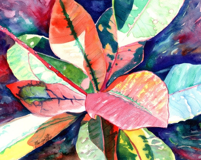 Kauai Croton Leaves, Original Watercolor Paintings, Tropical art, Hawaii art, Kauai art, Hawaiian art, colorful leaves, Hawaii, Maui, Oahu