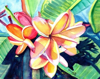 kauai plumeria print from hawaii tropical flowers kauai fine art prints frangipani art plumerias kauaiartist marionette hawaiian flower