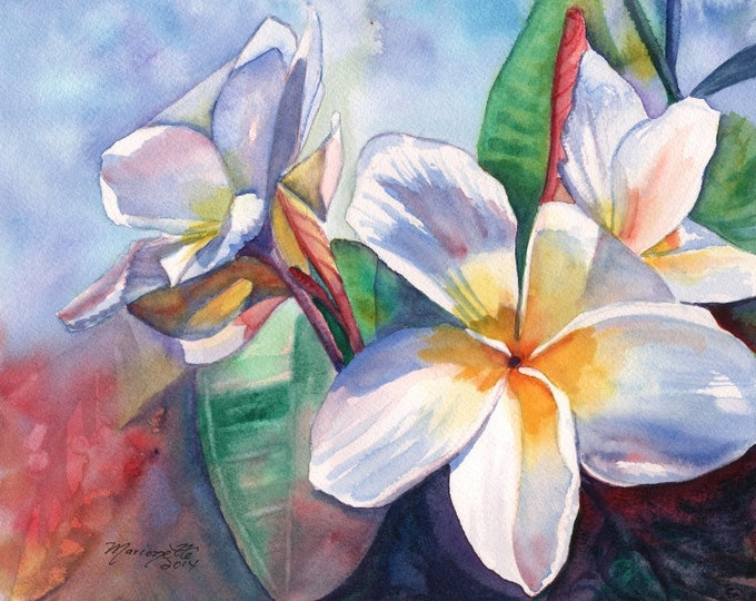 plumeria art print  frangipani art hawaiian lei hawaii paintings tropical flowers kauai artwork kauaiartist plumeria artwork