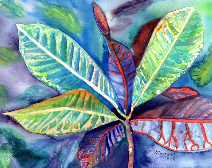 Tropical Leaves Watercolor Croton Plant Original Painting Hawaii Art Hawaiian Decor Made in Kauai Original Paintings Leaf Watercolors