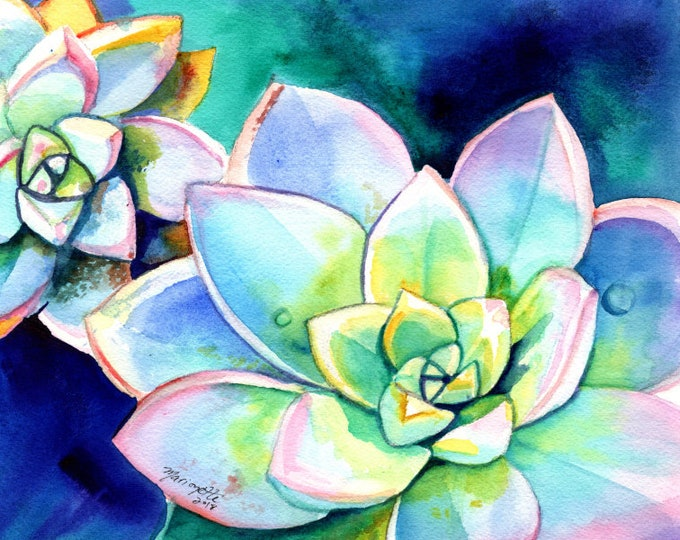 Succulent Watercolor, Original Cactus Watercolor, Succulent Paintings, Succulent Wall Art,  Hawaii art, Kauai art, Succulent Gift