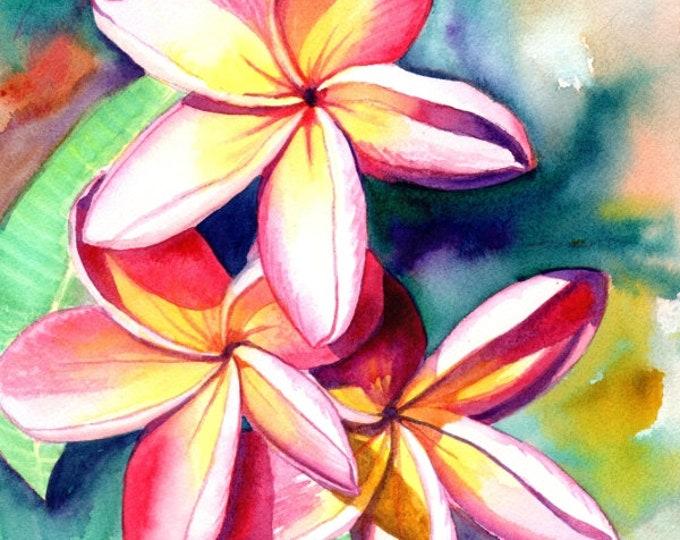plumeria art, plumeria print, plumeria artwork, plumeria garden, kauai artist, hawaiian art gallery, oahu maui, kauai art, plumeria painting