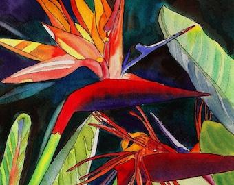 Bird of Paradise,  tropical flower, Hawaiian print, Kauai Painting, Strelitzia, exotic flowers, crane lily, crane flowers, tropical bouquet