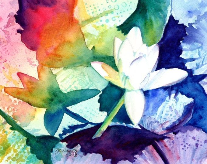 Water Lily Print, Water Lily Painting, Water Lily Wall Art, Water Lillies, Watercolor flower art, Watercolor Print, Rainbow flower