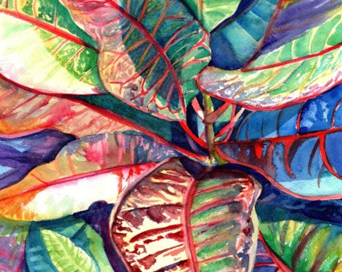 croton tropical leaves print kauai hawaii colorful foliage plants  hawaiian decor marionette taboniar kauaiartist kauai prints