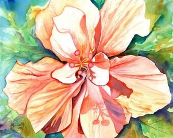 hibiscus art print, flower prints, hawaiian art,  peach hibiscus, hibiscus paintings, kauai maui oahu,  hawaiiana, tropical flowers