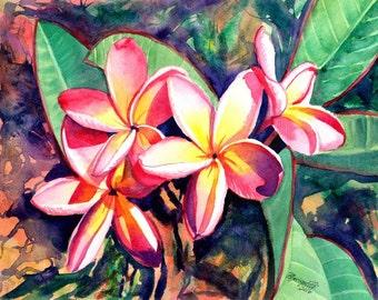 Plumeria print from Kauai Hawaii Sweet Plumeria Frangipani Hawaiian Tropical Flowers kauaiartist Kauai Art Hawaii Interior Decor