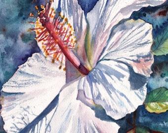 White Hibiscus Art Print, tropical hibiscus art, Kauai Hawaii, Hawaiian flowers, Hawaiian flower art, Hibiscus giclee prints