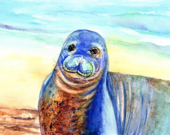 Hawaiian Monk Seal Print, Poipu monk seal, Hawaii beach seal art, Kauai monk seals, Hawaii decor, Hawaii art, Poipu Beach Art, monk seal art