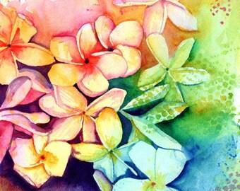 Plumeria Print, Plumeria Art, Tropical Flowers, Frangipani Art, Kauai Art, Original Hawaiian Painting, Aloha Flowers, Rainbow, Hawaii Decor