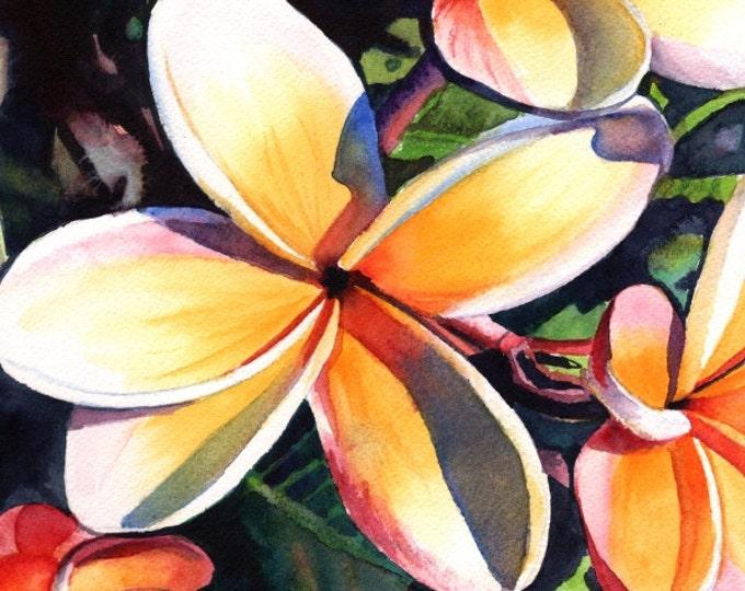 plumeria art print, plumeria artwork, paintings of plumeria, kauai artist, hawaiian art galleries, kauai art, oahu maui, plumeria artwork