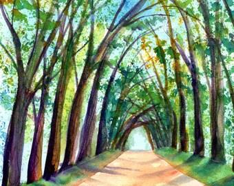 Kauai Tree Tunnel Original Watercolor, Koloa Tree Tunnel, Tree Tunnel Paintings, Kauai Art, Kauai Watercolors